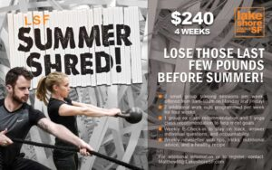 LSF_LP-LSF-Summer-Shred_digital-signage_web