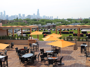 Harvest Chicago Skyline View